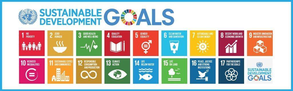 The UN SDGs